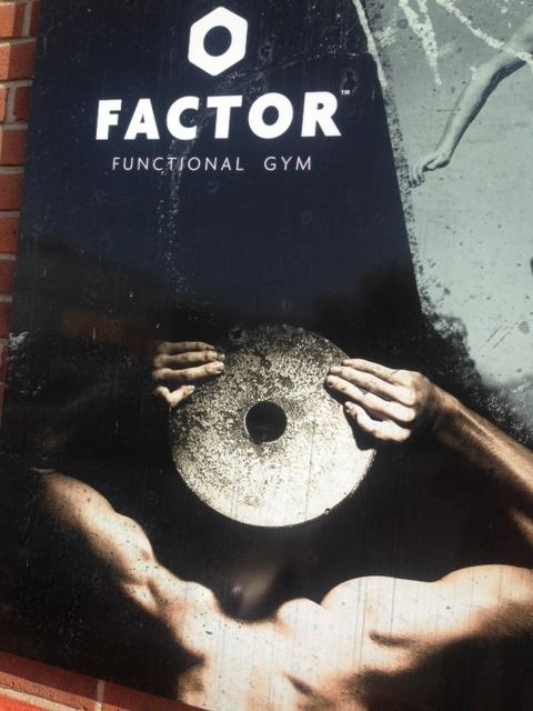 factor.jpeg