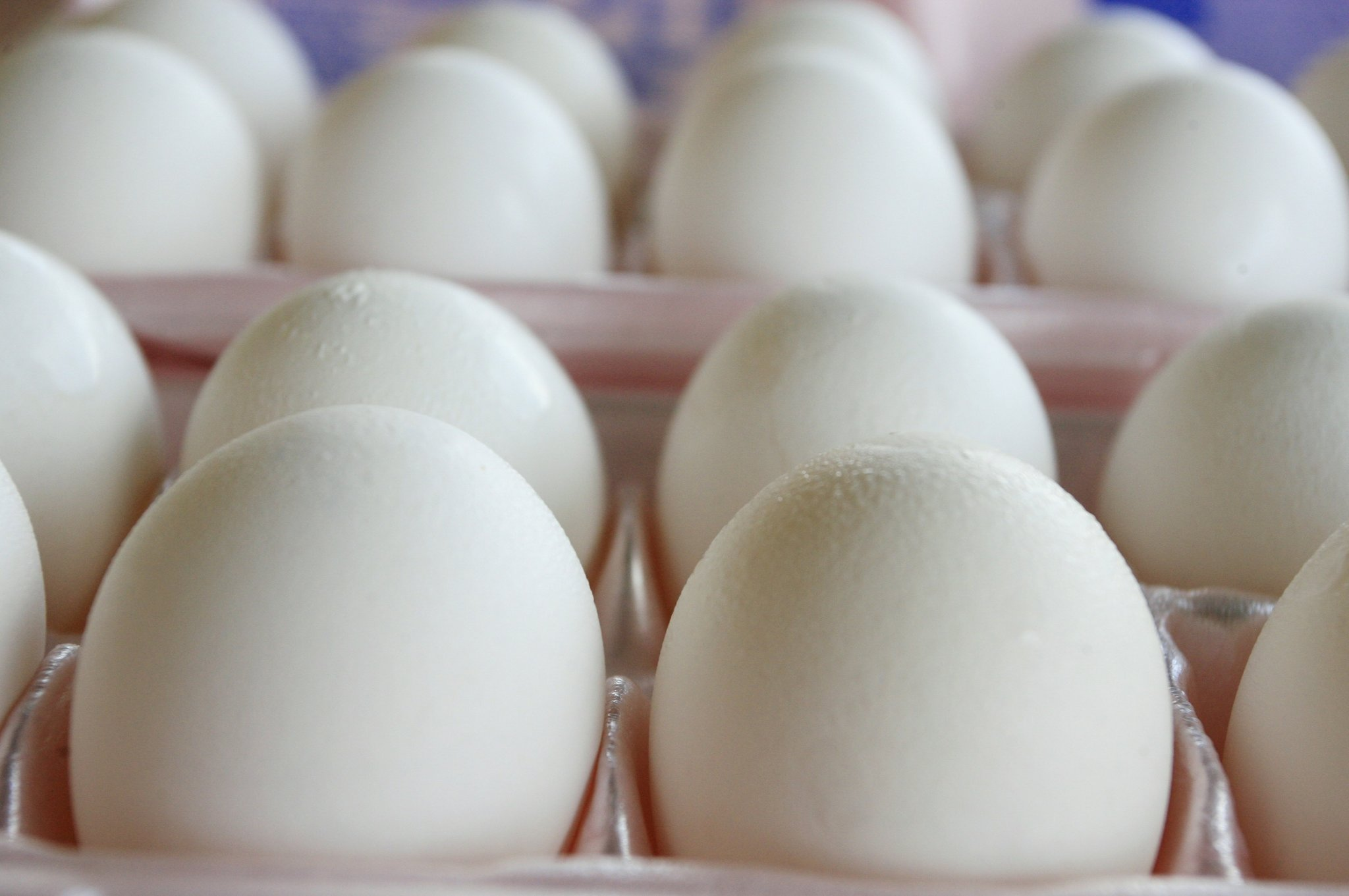 31question-booming-eggs-superJumbo.jpg